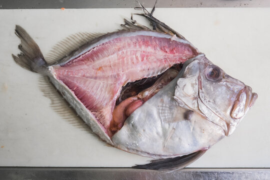 Dory fish being filleted