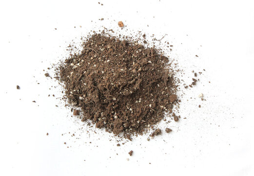 Dirty earth on white background. Natural soil texture. sand.