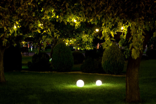 illumination backyard light garden with 2 ground lanterns with round diffuser lamp and garland of light bulbs on tree branches with leaves, dark landscaping with illuminate night scene, nobody.