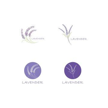 Fresh Lavender flower logo vector