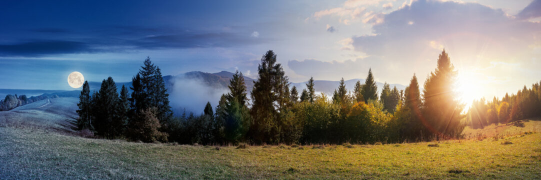 day and night time change concept of foggy autumn panorama. spruce trees on the meadow beneath a sun and moon. mountain behind the mist. cloud inversion natural phenomenon observed from the side