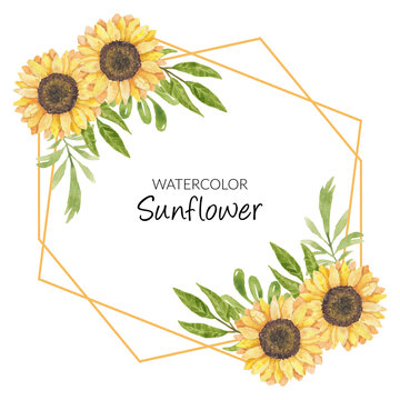 Sunflower watercolor illustration frame decoration