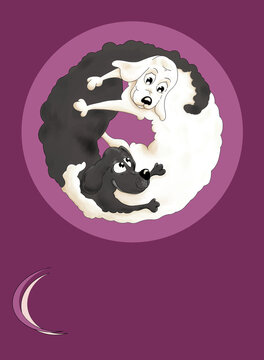 Hunde in Harmonie: Yin und Yang