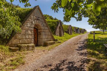 Gombos-hegyi pincesor in Hercegkut, UNESCO site, Great Plain, North Hungary