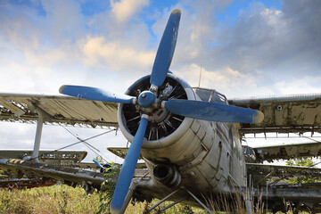 Abandoned and destroyed planes are in the field