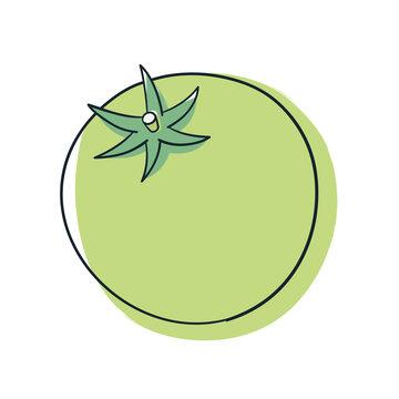 緑色のトマト