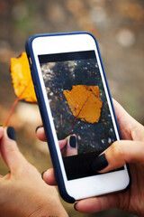 girl holds a yellow leaf