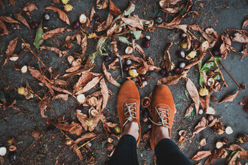 boots and chestnuts