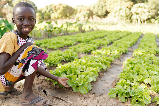 Agriculture for African children, little black boy posing for the camera