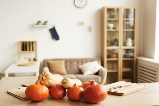 Horizontal no people shot of modern apartment living room interior with fresh ripe pumpkins lying on table, copy space