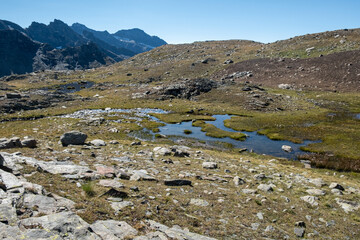 Panoramic view of a marsh in an alpine landscape.