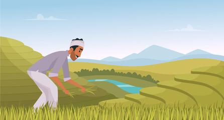 Indian agriculture landscape. Farmer working in indian rice fields rural worker vector cartoon background. Illustration indian agricultural, plantation landscape