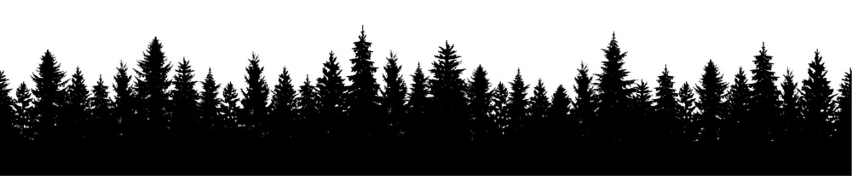 Forest seamless silhouette background. Pine tree. Fir trees landscape. Christmas fir trees silhouette - stock vector.