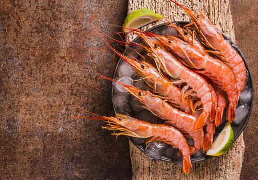 Red shrimps gourmet ocean wild jumbo shrimps copy space.