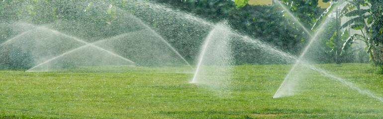 Fototapeta Irrigation System Watering the green grass, blurred background obraz