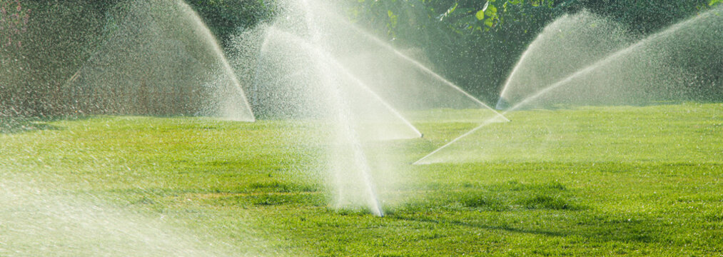 Irrigation System Watering the green grass, blurred background