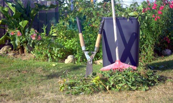 ramassage de déchets de jardinage et recyclage en automne
