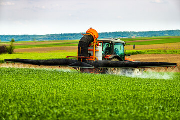 Wall Mural - Farmer in tractor spraying green wheat field