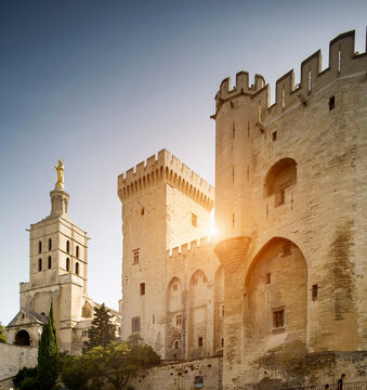 Palace of the Popes and the cathedral, Avignon, Provence, France