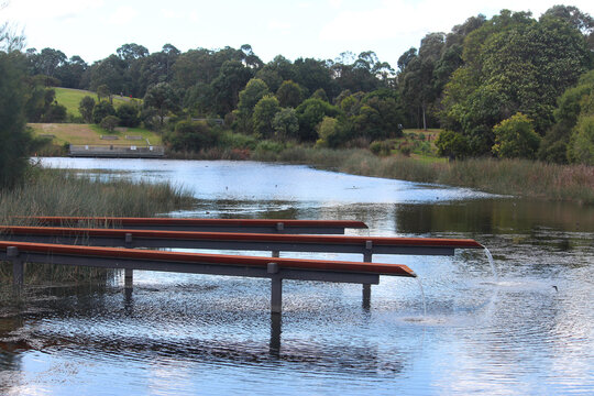 Pond with trees in Sydney Park. Also an artwork comprising a series of elevated terracotta channels that reflect the site's history and aerate and distribute water throughout the wetland system.