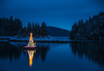 View of illuminated Christmas tree on boat dock at night