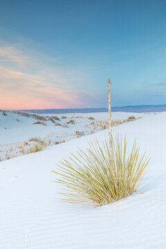 Scenic view of White Sands National Monument, New Mexico