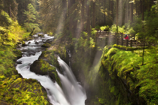 Photographer standing above Sol Duc Falls in Olympic National Park