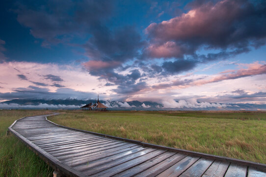 View of boardwalk passing amidst grassy landscape