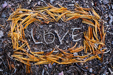 Close up of love text written with pine leaves on ground