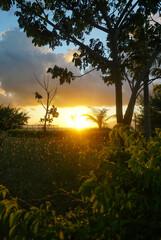 Beautiful morning view at New Marina Boom Banyuwangi East Java Indonesia