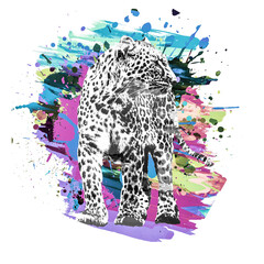 abstract background with leopard