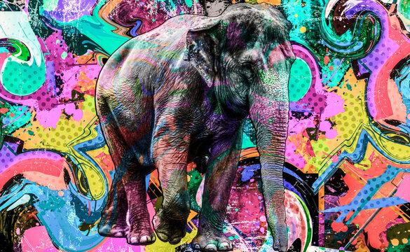 background with elephant