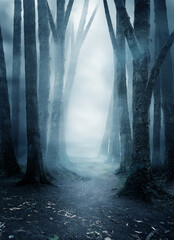 A quite and mysterious forest covered in mist with a pathway running through it. Photo composite.