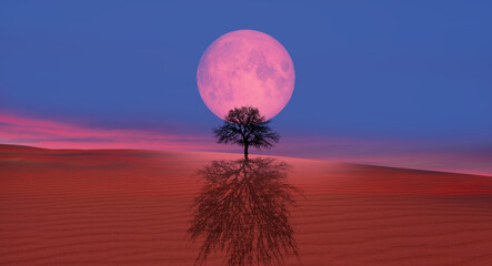 Wall Mural - Lone Dead Tree with Lunar eclipse, sand dune in the foreground