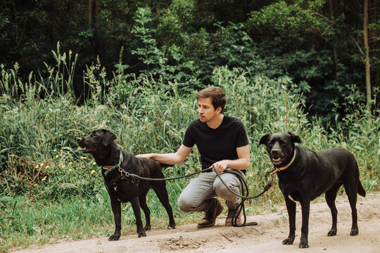 Millennial man sitting with his two black dogs on alert in the forest