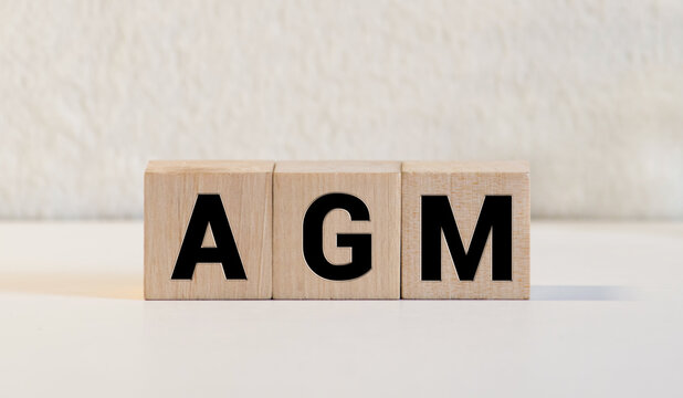 A wooden block with the word AGM Annual general meeting written on it on a white background. Business concept