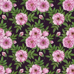Cute romantic vintage floral seamless pattern with wild rose flowers. Watercolor hand drawn illustration.
