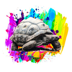 tortoise with colorful paint splashes