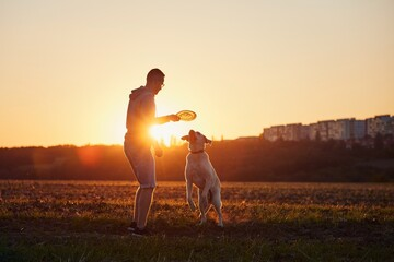 Man throwing flying disc for his dog