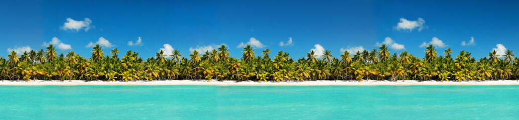 Coastline with coconut palm tree jungle on caribbean beach,  Island Saona. Dominican Republic Wall mural
