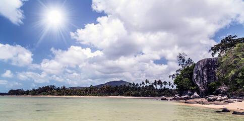 Beach sand Seychelles mangrove forests
