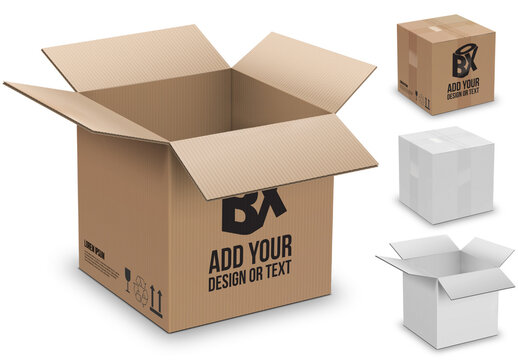 Open and Closed Cardboard Box 3D Preview