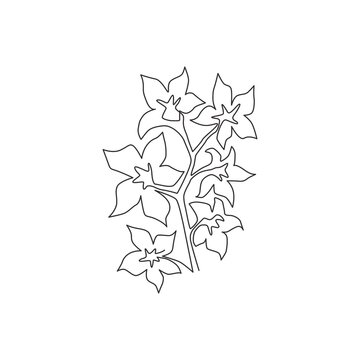 Single continuous line drawing beauty fresh larkspur for home decor wall art print poster. Decorative consolida perennial flower for invitation card. Modern one line draw design vector illustration