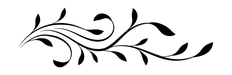 Wall Mural - Decorative floral ornament isolated on white background
