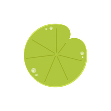 Lily pad vector. Lily pad logo design.