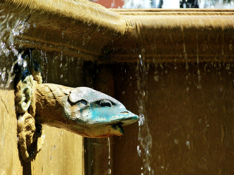 old fountain in bright summer light in public park. cascading water drops from beige color stone ledge. closeup of fish shaped water spout with scales. in blue color. summer vacation concept.