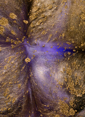 Golden and purple metallic abstract liquid background