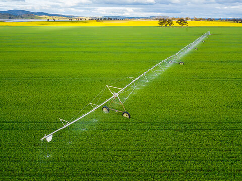 Looking down on a large irrigation sprinkler in a green paddock