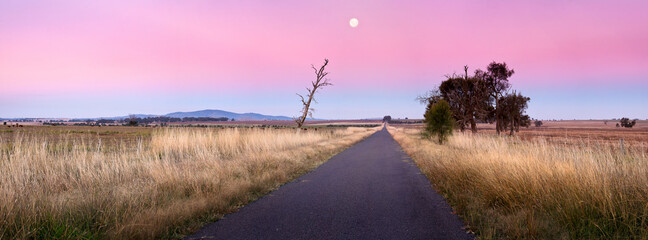 The full moon rising into a pink sky over a country road
