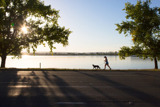 Silhouette of a woman walking a dog at Lake Burley Griffin